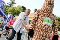 10.06.2015 |  Tiergarten Schönbrunn |  Promis laufen für die Langhälse <br>im Bild:<br> Peter Rapp
